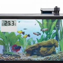 Digitales Aquarien Thermometer